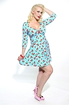 Sugarcake Pinup Swing Dress